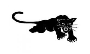 BLACK PANTHER per SORPRESA
